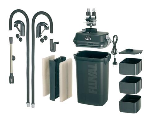 Acquariologia scalari webpage franco fasciolo for Acquario con filtro esterno